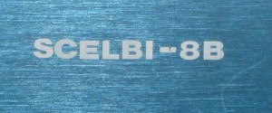 Scelbi logo- close up